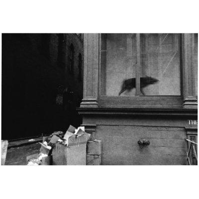 画像2: NY 1980 / 大竹昭子