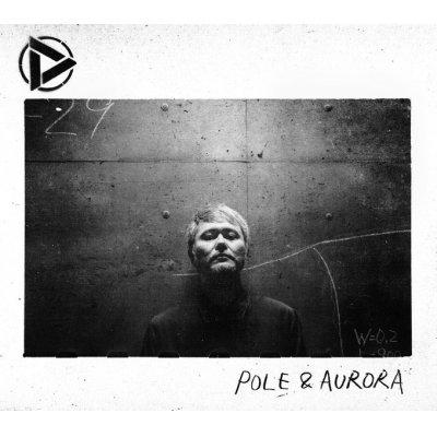 画像1: Discharming man / POLE & AURORA